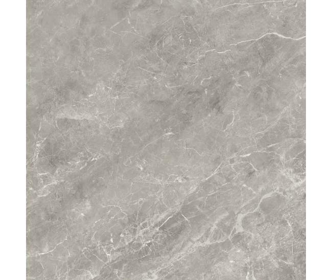 Balmoral Grey brillo 60x60 R